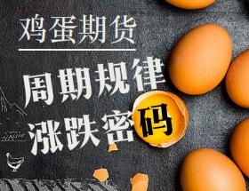鸡蛋周期规律与涨跌交易密码专题培训