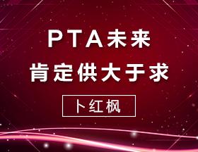 卜红枫:PTA未来肯定供大于求