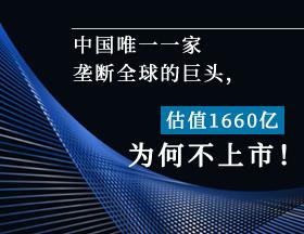 估值超1660亿,中国唯一一家垄断全球的巨头